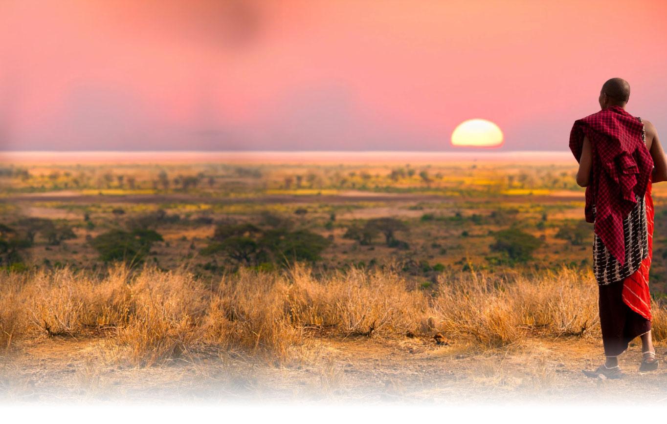 Bidco Africa background image